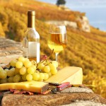 https://www.maison-da-silva.fr/wp-content/uploads/2014/09/Cheese-Wine-and-Grapes-1280x800-wide-wallpapers.net_.jpg